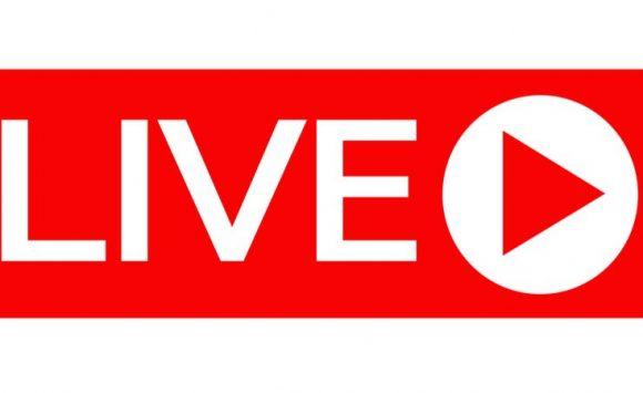 Live Training auf Facebook und Zoom